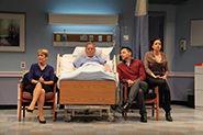 The Lyons - Directed by John Vreeke - Round House Theatre, Washington DC-Bethesda, Maryland